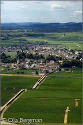 Aerial view of Meursault.
