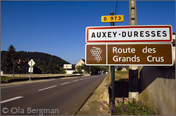 Auxey-Duresses, Burgundy.