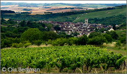 View over Irancy, Burgundy.