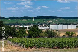 Chablis and the grand crus seen from Milly.