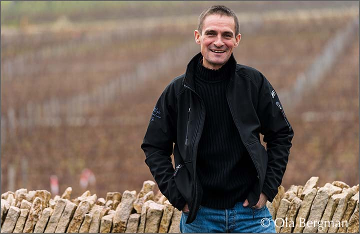 Laurent Pillot, Domaine Fernand & Laurent Pillot, Chassagne-Montrachet.