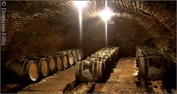 The cellars of Domaine Félix in